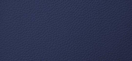 Sininen Pana 5410